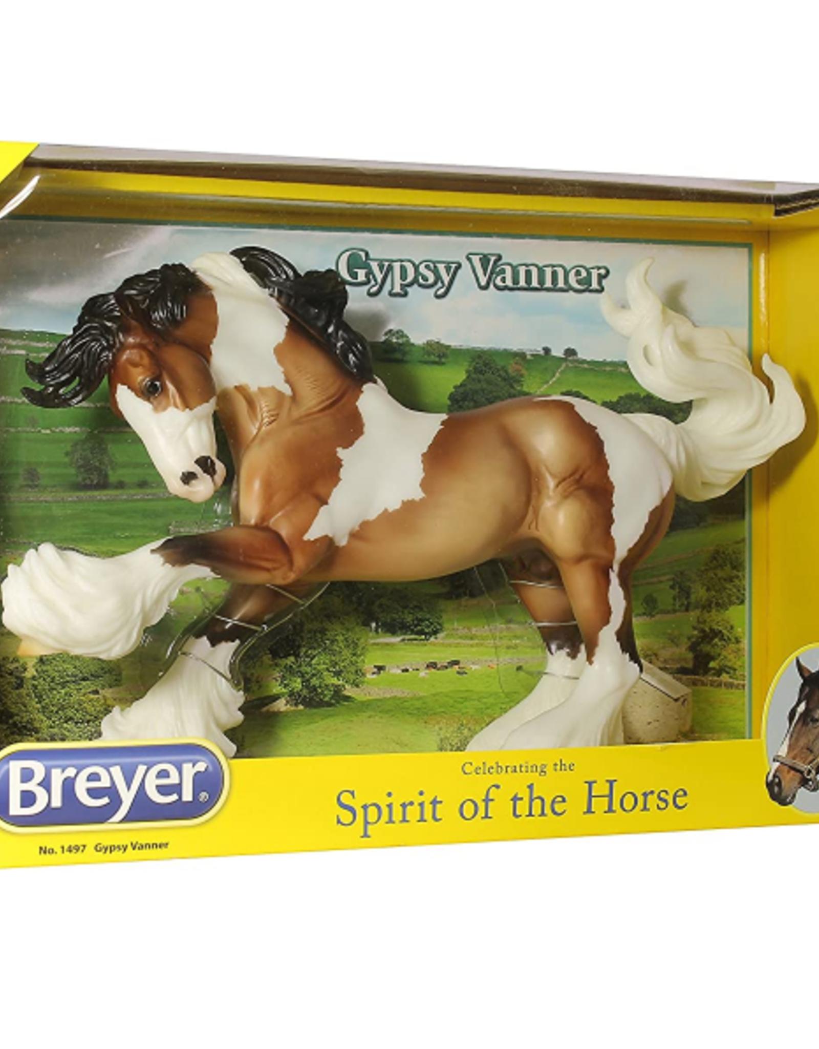 Reeves International Gypsy Vanner