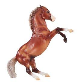 Silver Bay Mustang