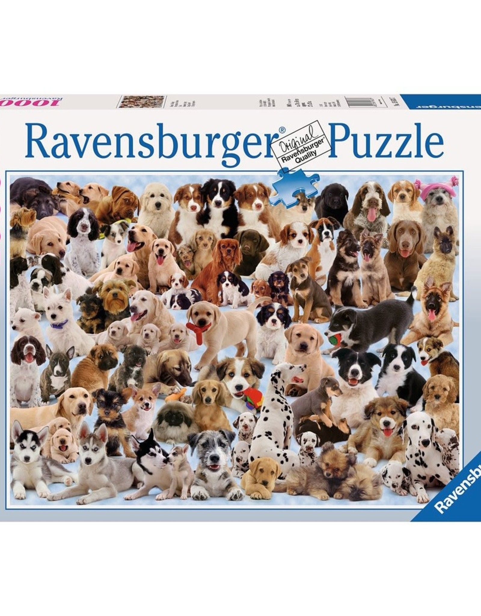 Dogs Galore! 1000 pc