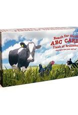 Flash of Brilliance ABC Flashcards