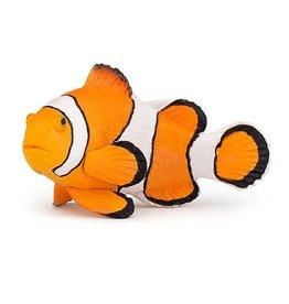 Papo Clownfish