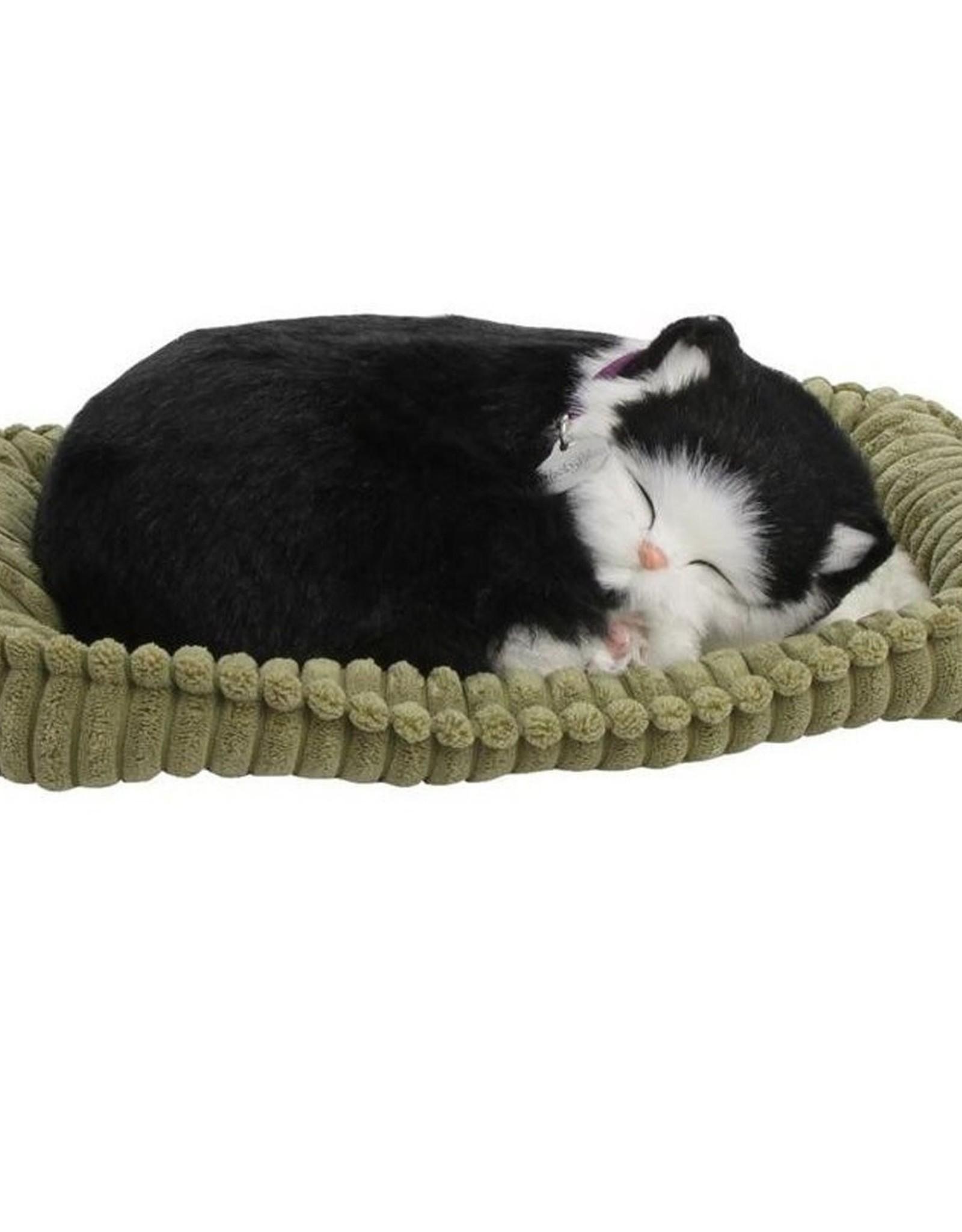 Perfect Petzzz Black & White cat
