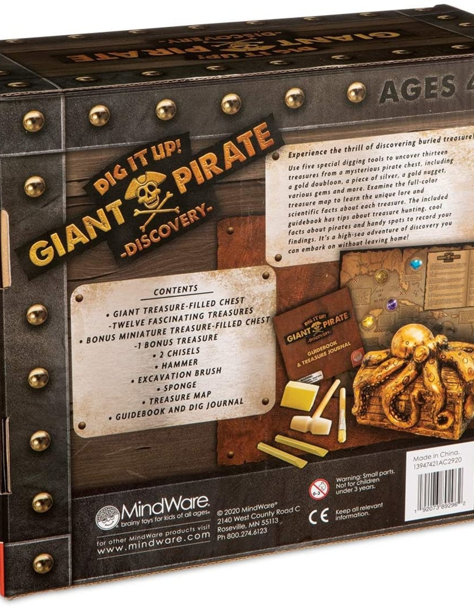 Dig It Up!: Pirate Discovery