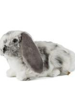 Living Nature Grey Dutch Lop Ear
