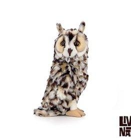 Living Nature Long Eared Owl
