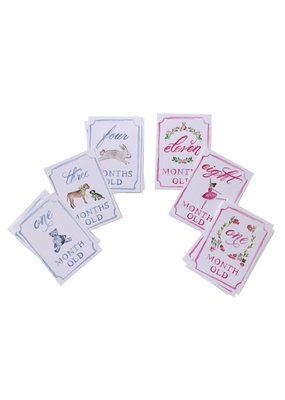 Over the Moon Month by Month Baby Cards