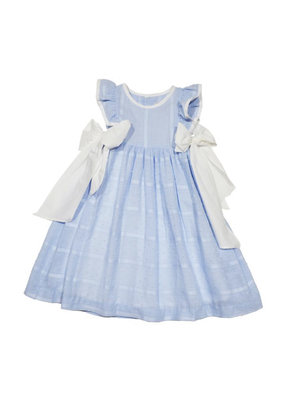 Sophie & Lucas S&L Plumeti Dress in Blue