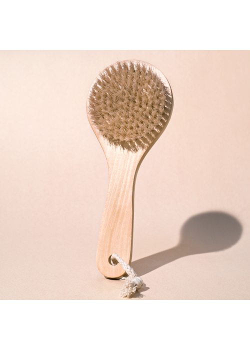 MP Body Dry Brush