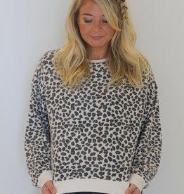 Z Supply: Leopard Pullover