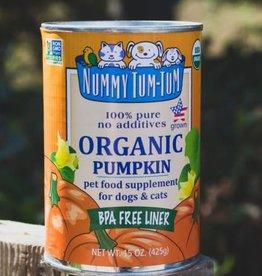 Nummy Tum Tum Nummy Tum Tum Pumpkin 15oz Case