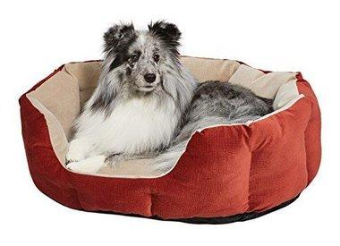 Dog Supplies - Molly's Healthy Pet Food Market