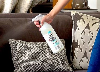 Stain & Odor Removers