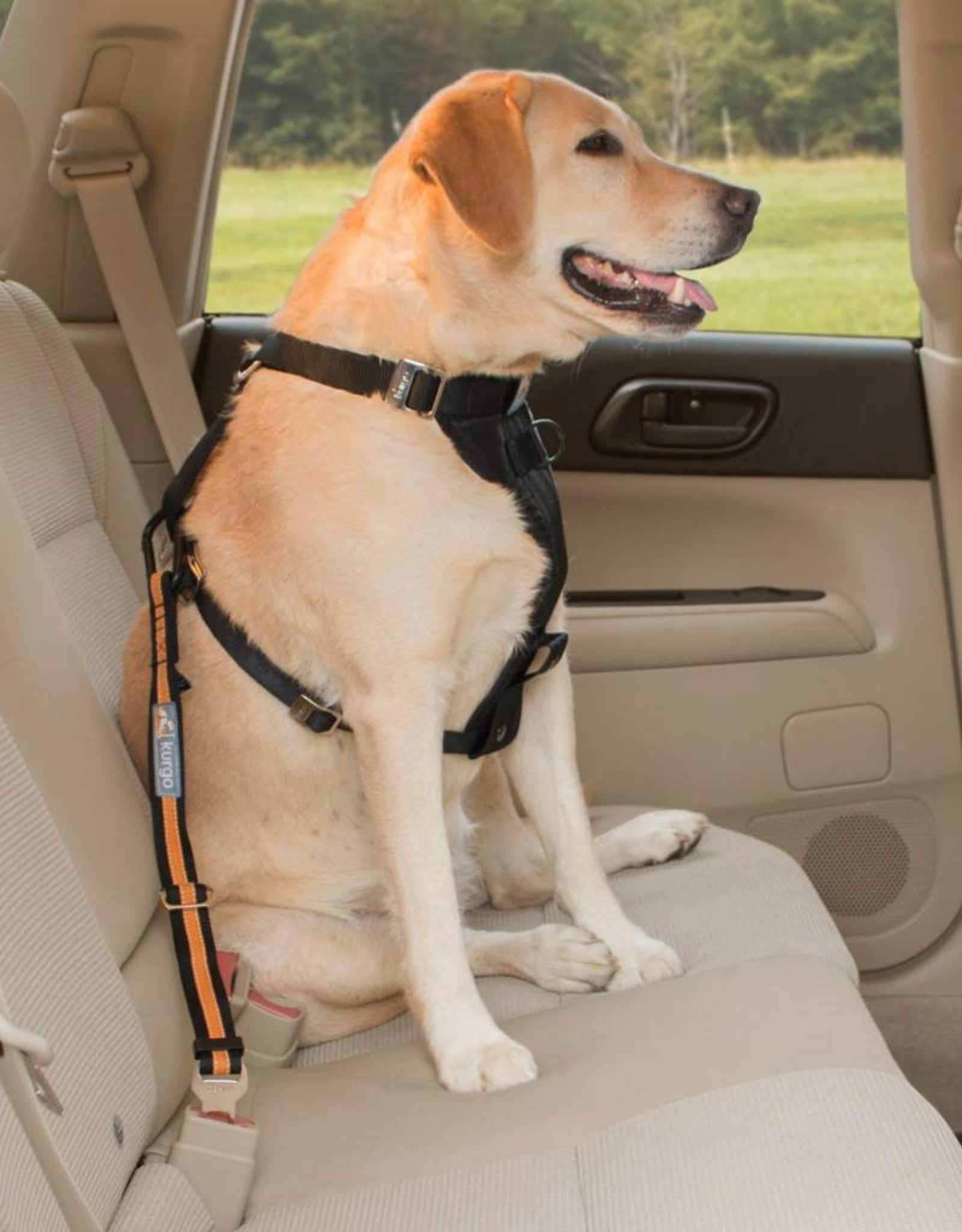Kurgo Kurgo Direct to Seatbelt Tether