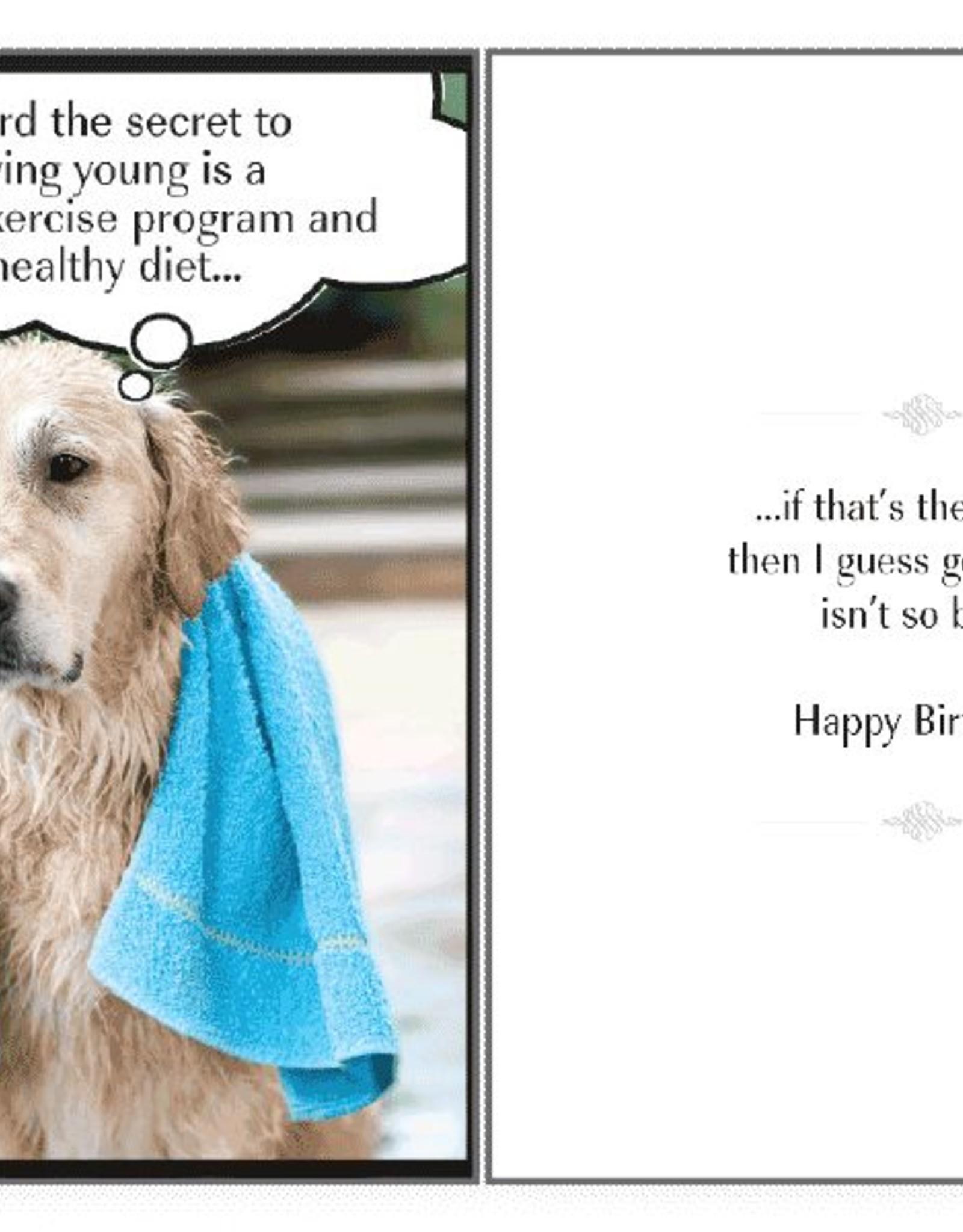 Dog Speak Dog Speak Card - Birthday - The Secret to Staying Young