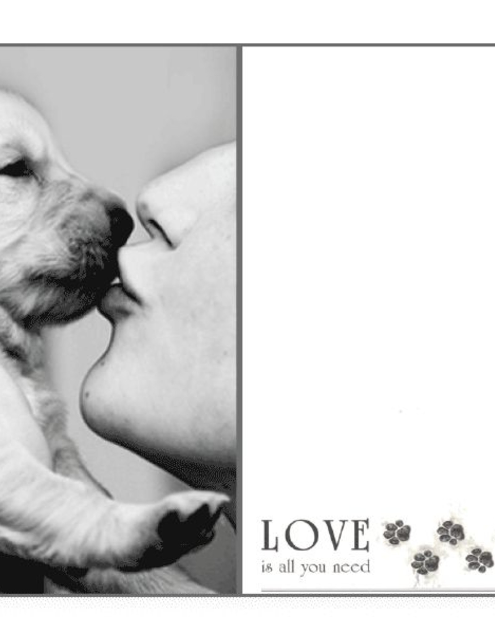 Dog Speak Dog Speak Card - Love - Love Is All You Need