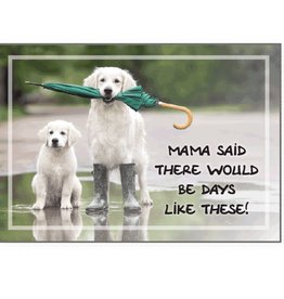 Dog Speak Dog Speak Card - Cope -Mama Said There Would Be Days Like These