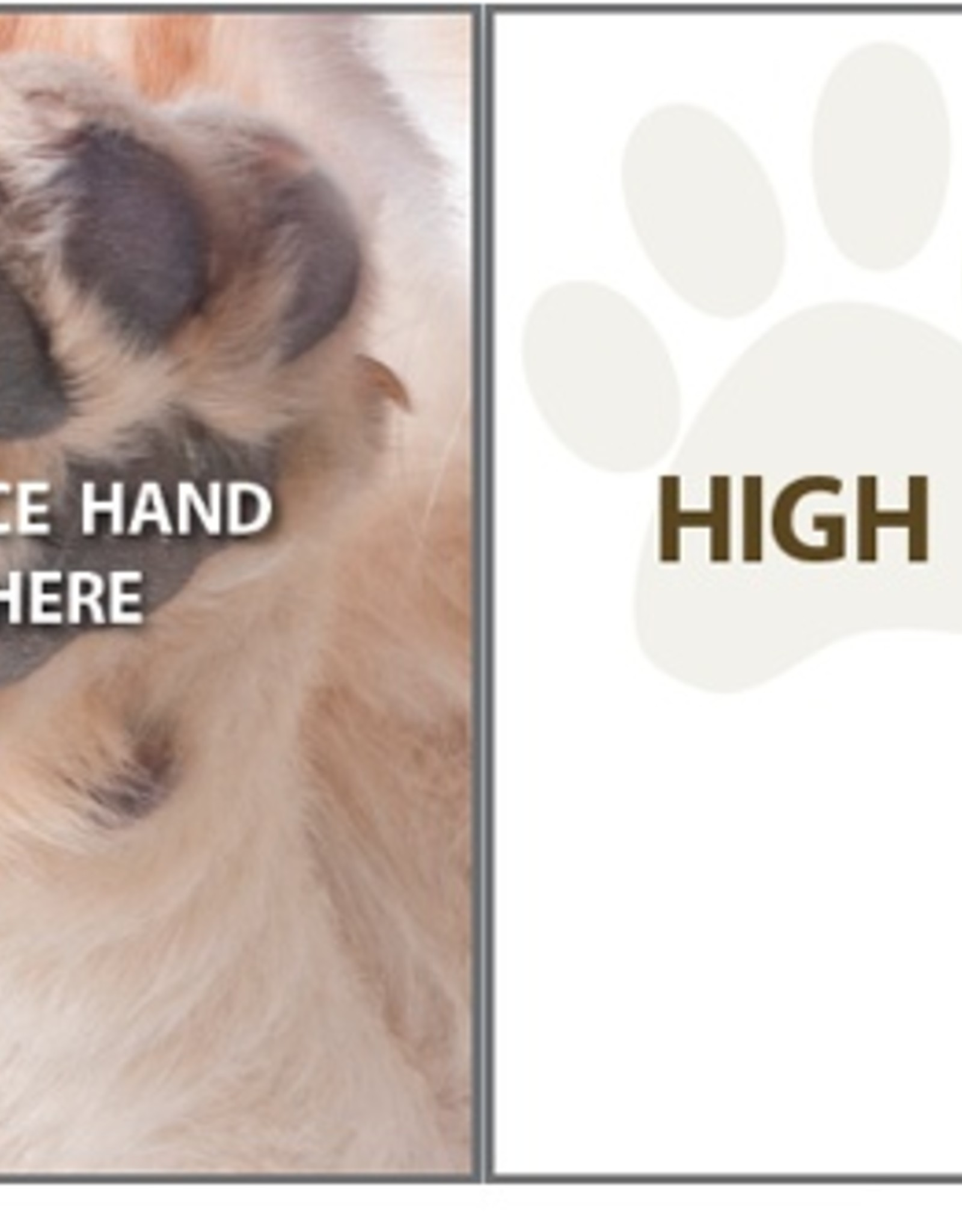Dog Speak Dog Speak Card - Encouragement - High Five