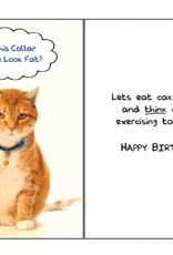 Dog Speak Dog Speak Card - Birthday - Does This Collar Make Me Look Fat?