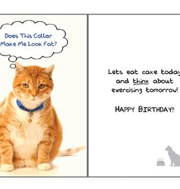 Dog Speak Dog Speak Card - Birthday - Does This Collar Make Me Look Fat?