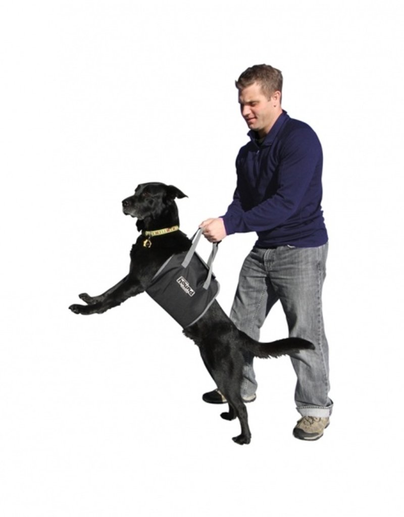 Outward Hound PupBoost Lift Harness