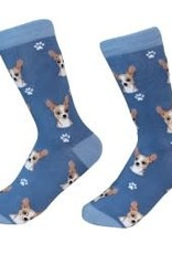Chihuahua, Fawn Socks