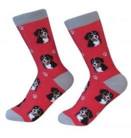 Bernese Mountain Dog Socks