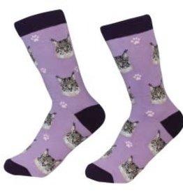 Cat  - Maine Coon  Socks