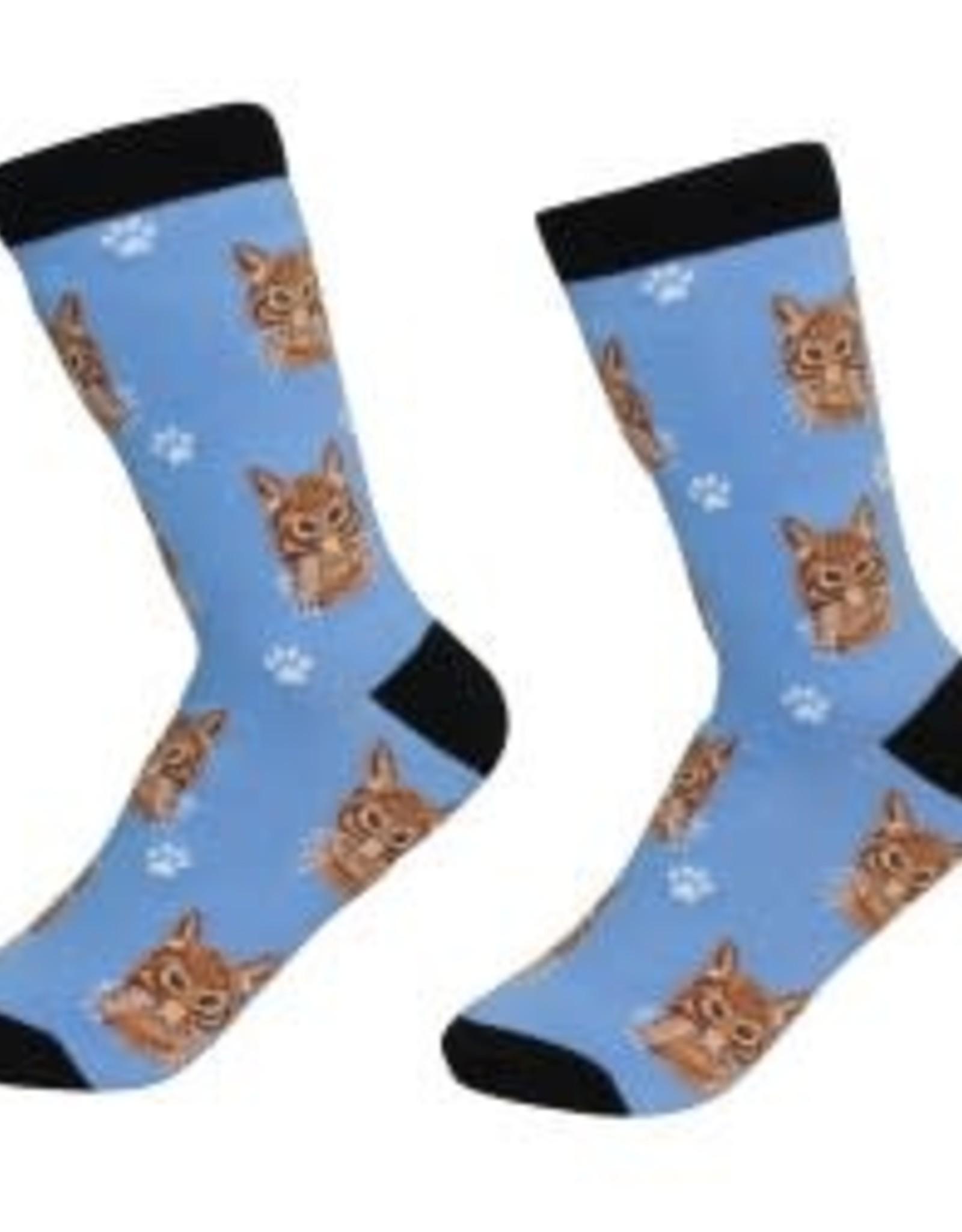 Cat - Orange Tabby Socks