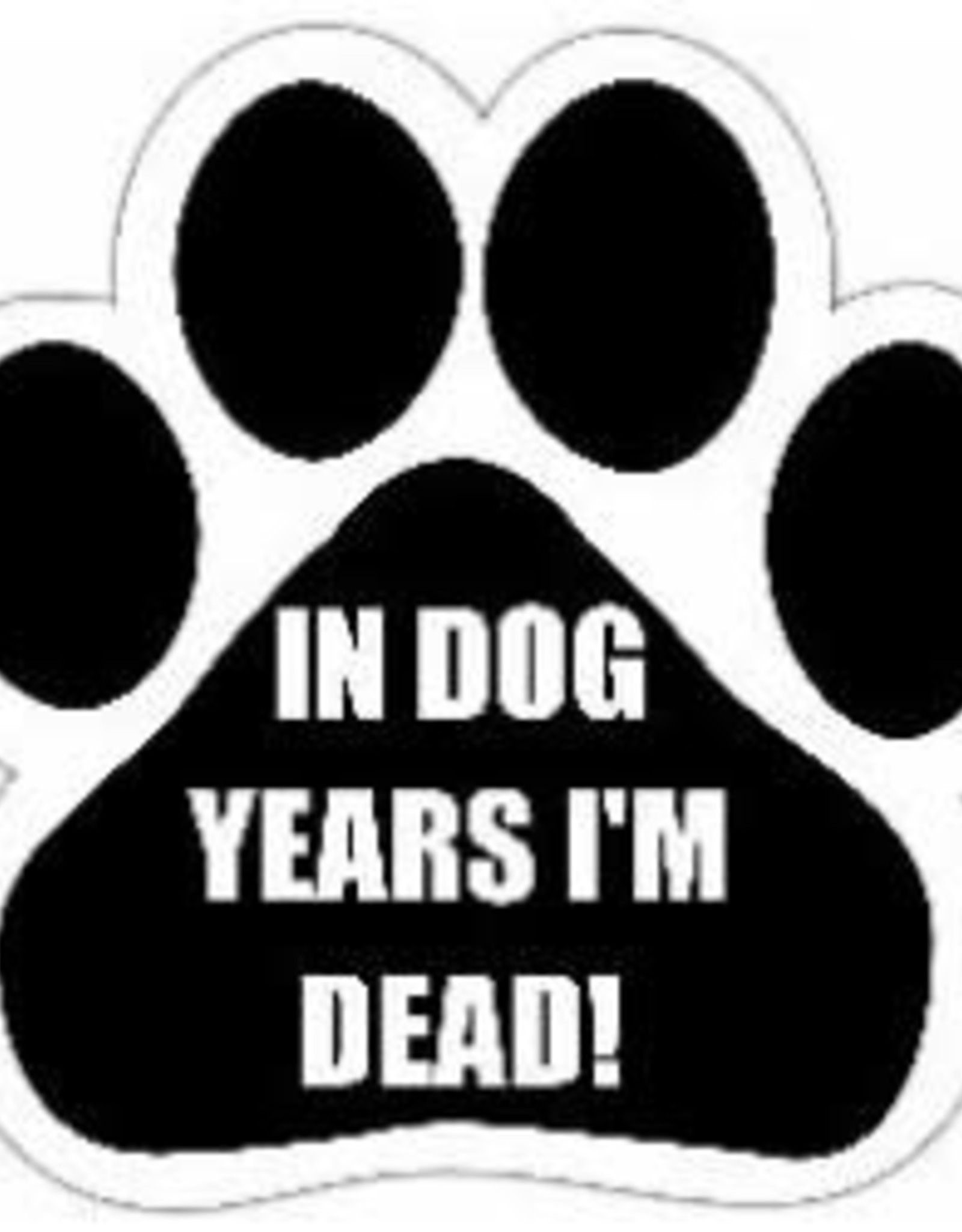 Car Magnet: In Dog Years, I'm Dead