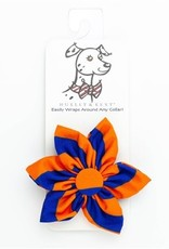 Orville Pinwheel Collar Attachment Boise Blue/Orange