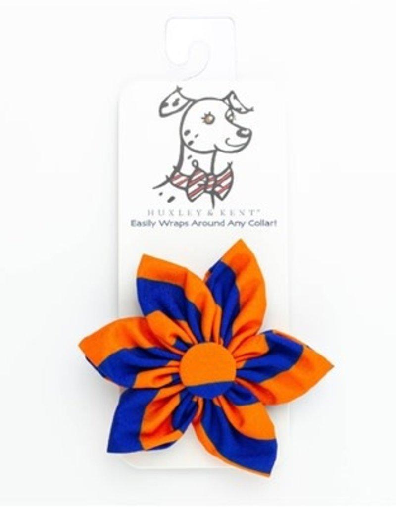 Orville Pinwheel Collar Attachment Boise Blue/Orange