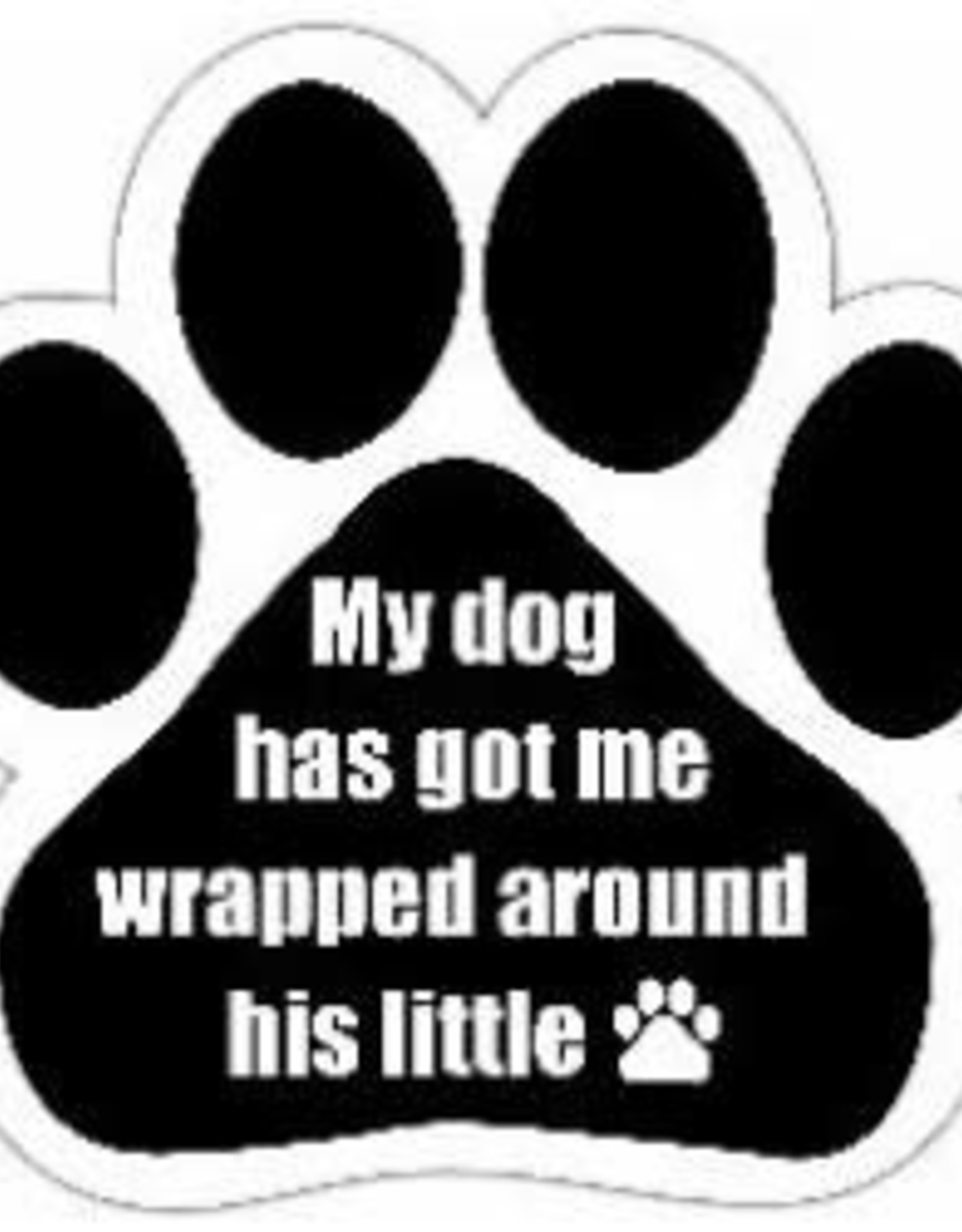 Car Magnet: My dog has got me wrapped around his little paw