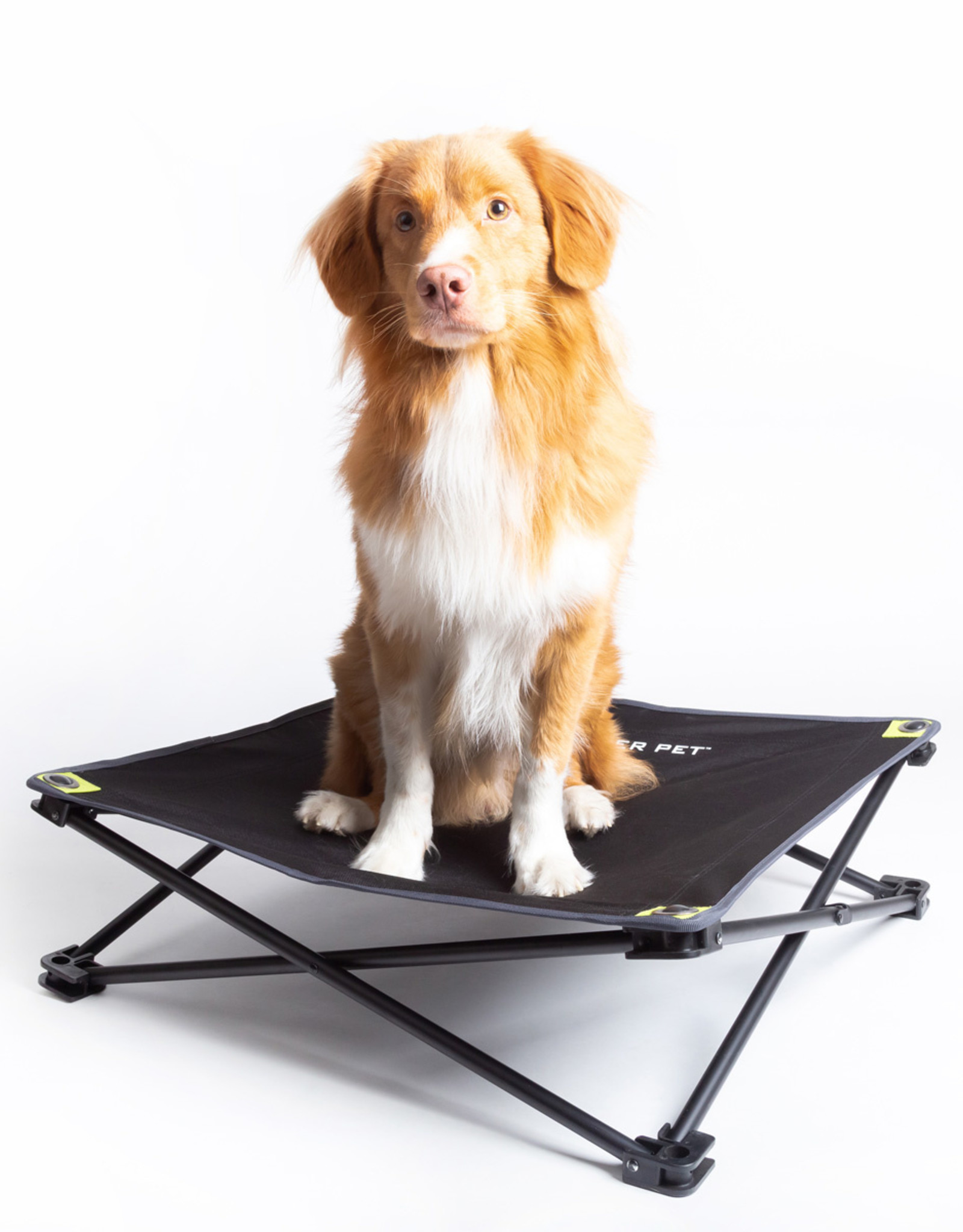 Hyper Pet Hyper Pet Home and Away Elevated Pet Bed