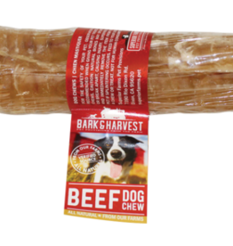 Bark & Harvest Bark & Harvest Beef Trachea Single 6""
