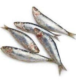 Oma's Pride Whole Sardines 2lb