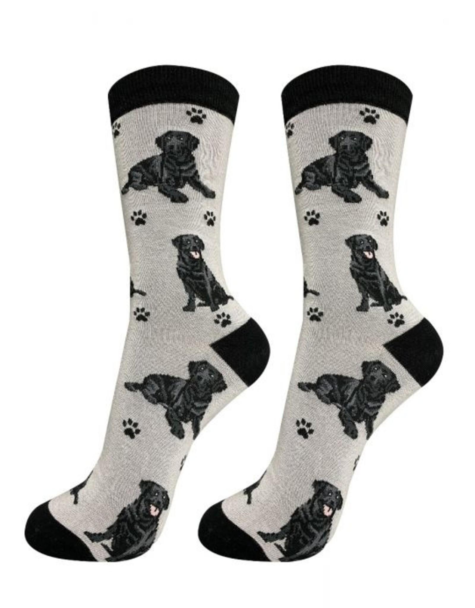 Labrador, Black Socks