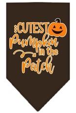 Cutest Pumpkin in the Patch Bandana