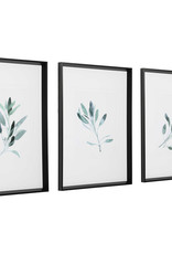 Simply Sage Watercolor Framed Prints (Set of 3)