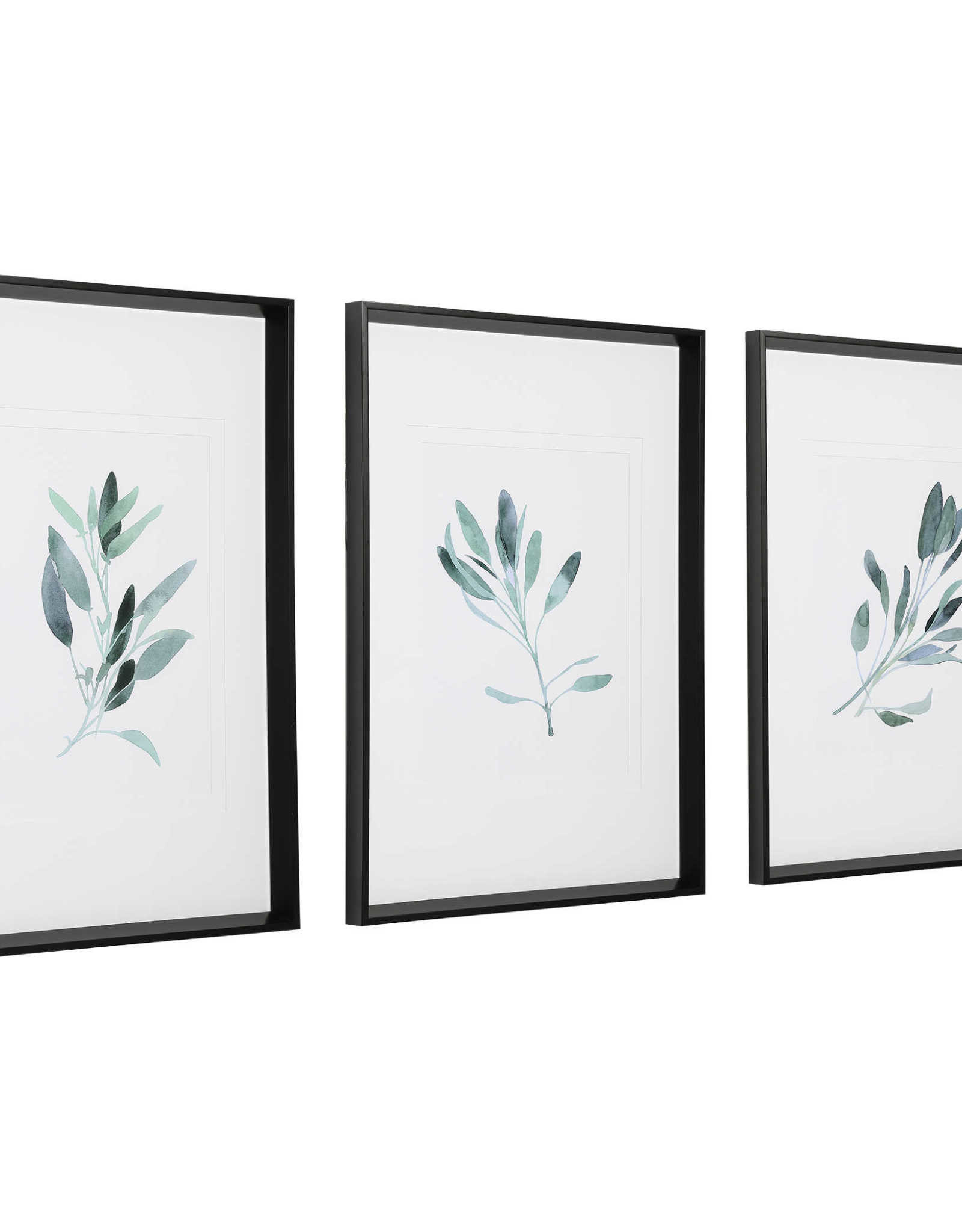 Simple Sage Watercolor Prints  - Set of 3
