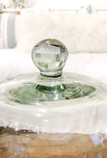 Glass Plated Cloche