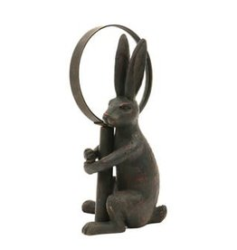 Rabbit with Magnifying Glass
