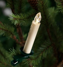 Tree Taper Candle w/ Remote, Set of 12
