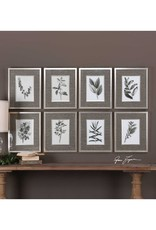 Sepia Gray Leaves Prints - Set of 8