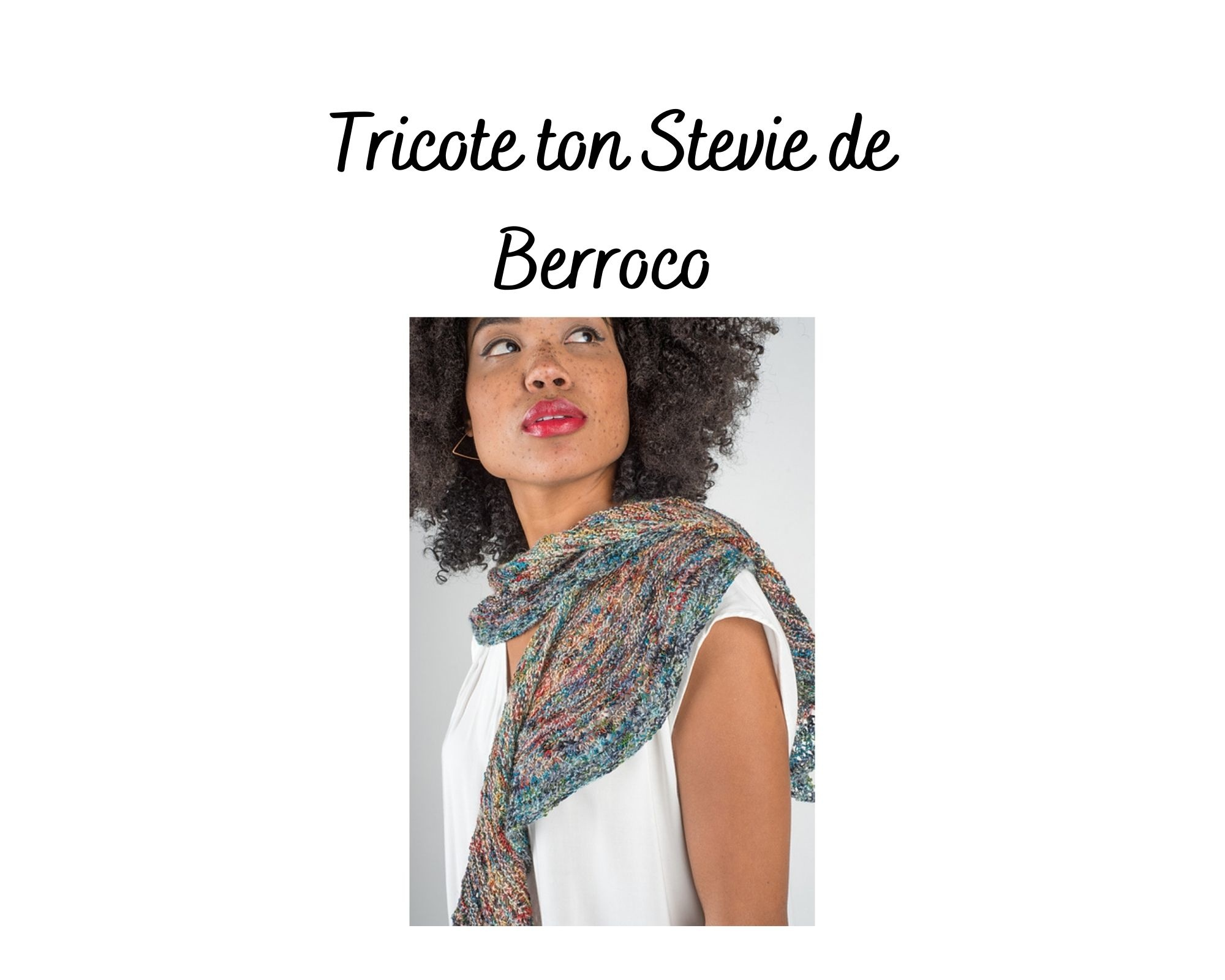 Berroco Tricote ton Stevie