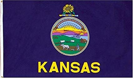 The Workroom Kansas Flag 3 x 5
