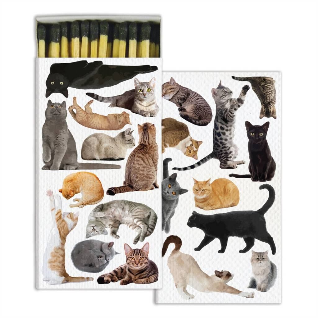 HomArt Matches - Cat Pack