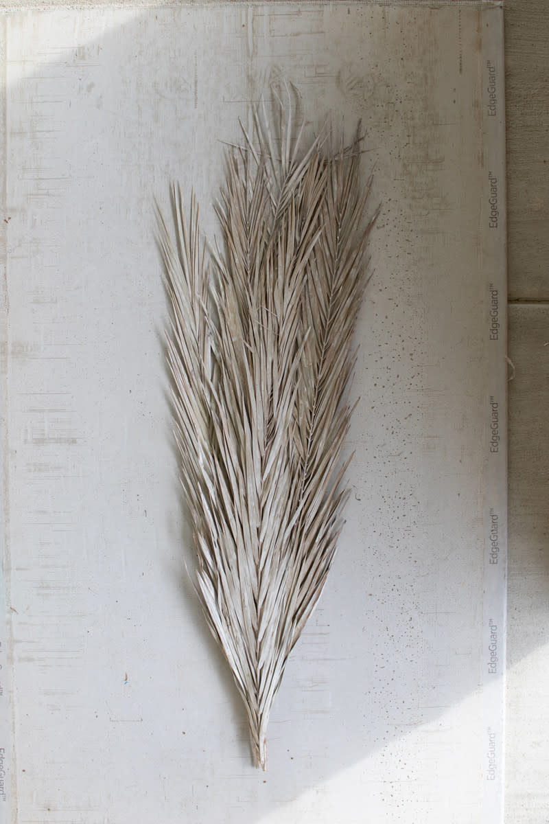 Kalalou Frosted White 10 Date Palm Leaves