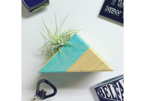 Glacier Wood Design Co GWD Co Airplant Magnet