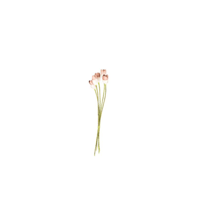 Botanica Pink Tulips