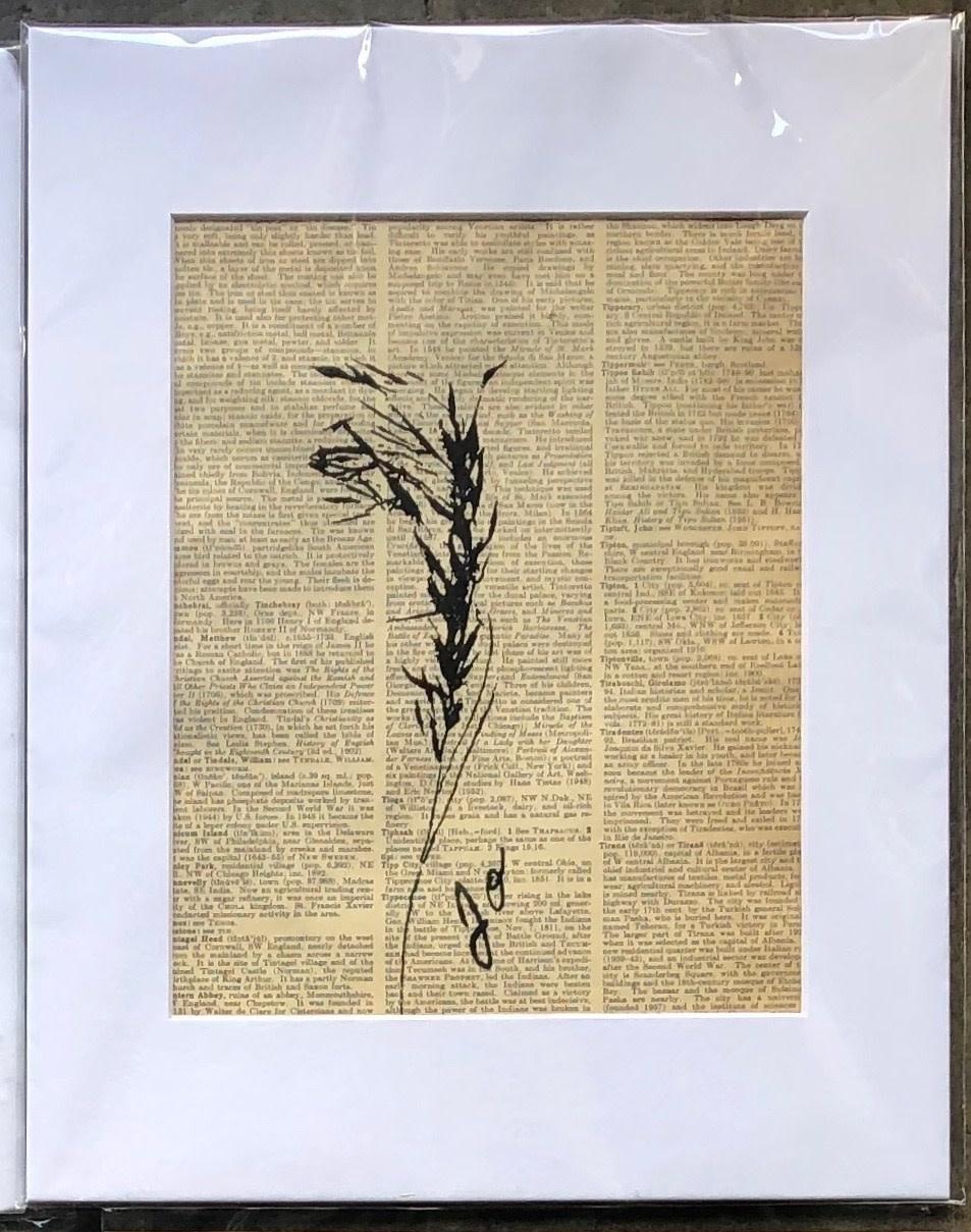 Jo O'Hanlon Jo's Matted 8x10 Prints